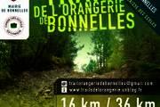 TRAIL DE L'ORANGERIE DE BONNELLES 2013