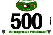 7. Hallbergmooser Volksfestlauf