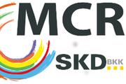 SKD-BKK MainCityRun Schweinfurt 2017