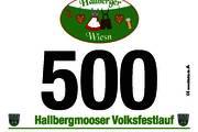6. Hallbergmooser Volksfestlauf